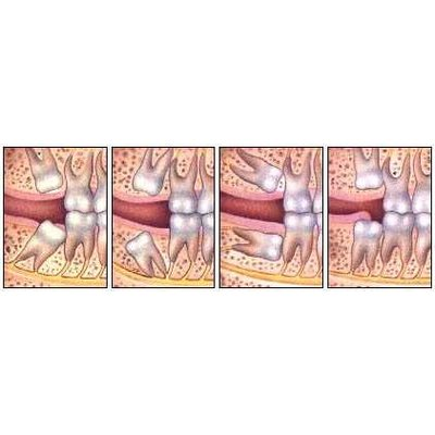 Clinic image 30